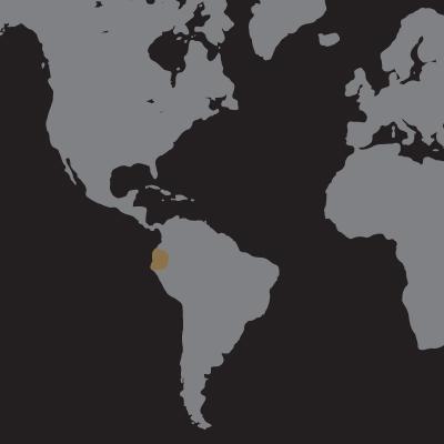 Ecuador Archidona-01