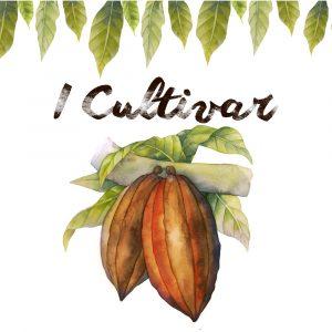I Cultivar